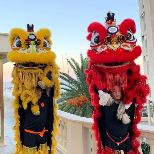 danse lion 5.jpg