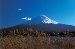mont-fuji-237244.jpg