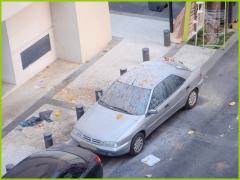 VOITURE VENTOUSE poubelle-sur-voiture-003.JPG